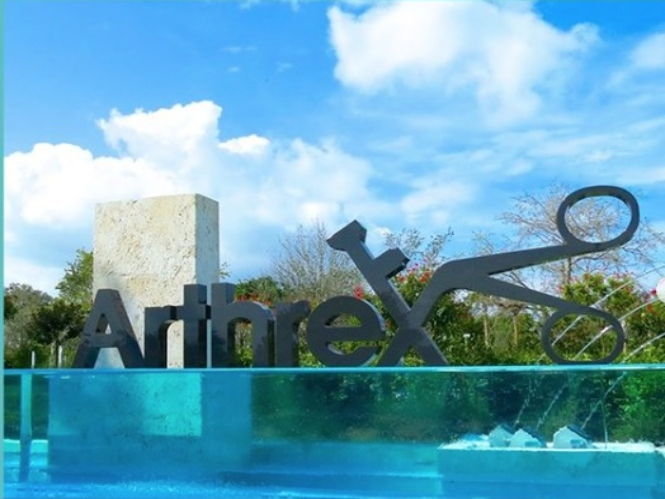 Importadora & Distribuidora Arthrex